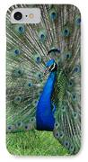 Peacocks Glory IPhone Case