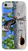 Pileated #27 IPhone Case