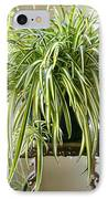 Spider Plant IPhone Case
