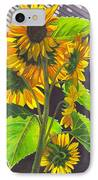 Stalk Of Sunflowers IPhone Case