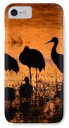 Sunset Reflections Of Cranes And Geese IPhone Case