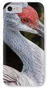 The Greater Sandhill Crane IPhone Case