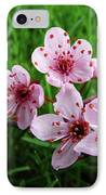 Tree Blossoms 4 Spring Flowers Art Prints Giclee Flower Blossoms IPhone Case