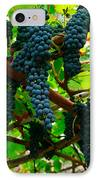 Vines IPhone Case