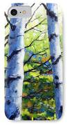 Walk To The Lake IPhone Case