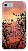 Wente Road Sunset IPhone Case