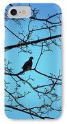 Winter Mourning IPhone Case
