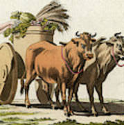 A Roman Farmer And His Wife  Load Poster