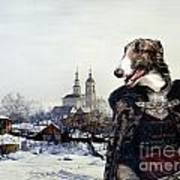 Borzoi - Russian Wolfhound Art Canvas Print Poster
