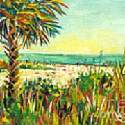 Crescent Beach Palm Poster