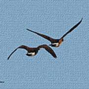 Fleeing Geese Poster