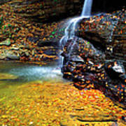 Holly River State Park Upper Falls Poster