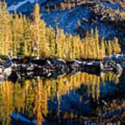 Leprechaun Lake Larches Poster