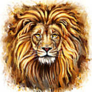 Lion Head In Front Poster