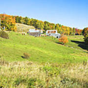 Maine Farm On Side Of Hill In Autumn Poster