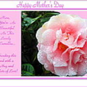Pink Camellia - Happy Mother's Day Poster