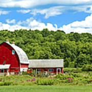 Red Farmstead In Summer Poster