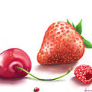 Red Fruits Poster
