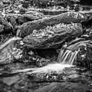 Waterfall Great Smoky Mountains Painted Bw    Poster