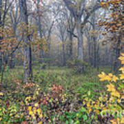 0133 Misty Meadow 2 Poster