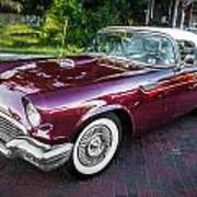 1957 Ford Thunderbird Convertible Painted    Poster