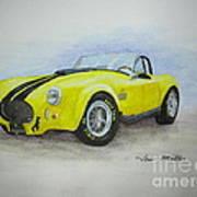 1965 Shelby Cobra Poster by Terri Maddin-Miller