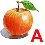 A Art Alphabet For Kids Room Poster