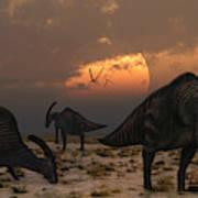 A Herd Of Parasaurolophus Dinosaurs Poster