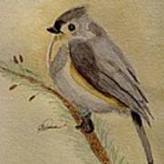 A Tufted Titmouse Poster