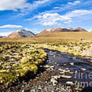 Altiplano In Bolivia Poster