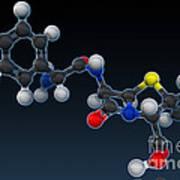 Amoxicillin Molecular Model Poster