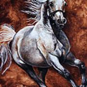 Arabian Purebred Poster