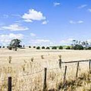 Arid Agricultural Landscape In South Tasmania Poster