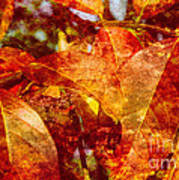 Autumn Bright Poster