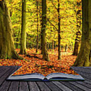 Autumn Fall Forest Landscape Magic Book Pages Poster