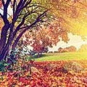 Autumn Fall Park Poster