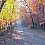 Autumn On Forbidden Drive Poster