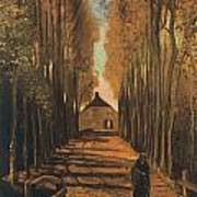 Avenue Of Poplars In Autumn Poster