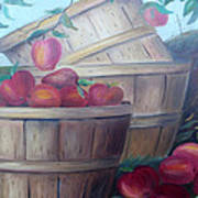 Baskets Of Apples Poster by Glenda Barrett