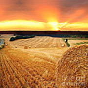 Beautiful Straw Bales Poster by Boon Mee