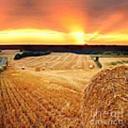 Beautiful Straw Bales Poster