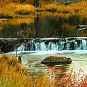 Beautiful Water Poster
