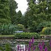 Beth Chatto Gardens Poster