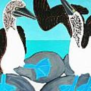 Blue Footed Boobies. Poster