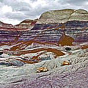 Blue Mesa Trail In Petrified Forest National Park-arizona Poster