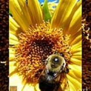 1 Busy Bumble L Poster