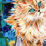 Cat Orange Poster