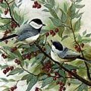 Chickadees And Cherries Poster