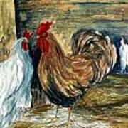 Chicken Coop Poster