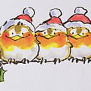Christmas Robins  Poster